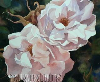 GMarquis_Doux_parfum_des_roses