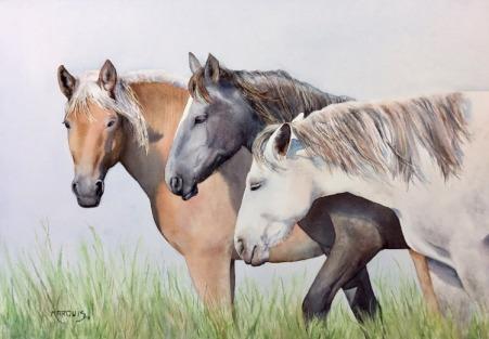Ginette Marquis - Les chevaux aquarelle sur papier 14 po x 20 po